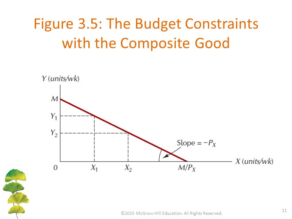 Figure 3.5: The Budget Constraints with the Composite Good ©2015 McGraw-Hill Education.