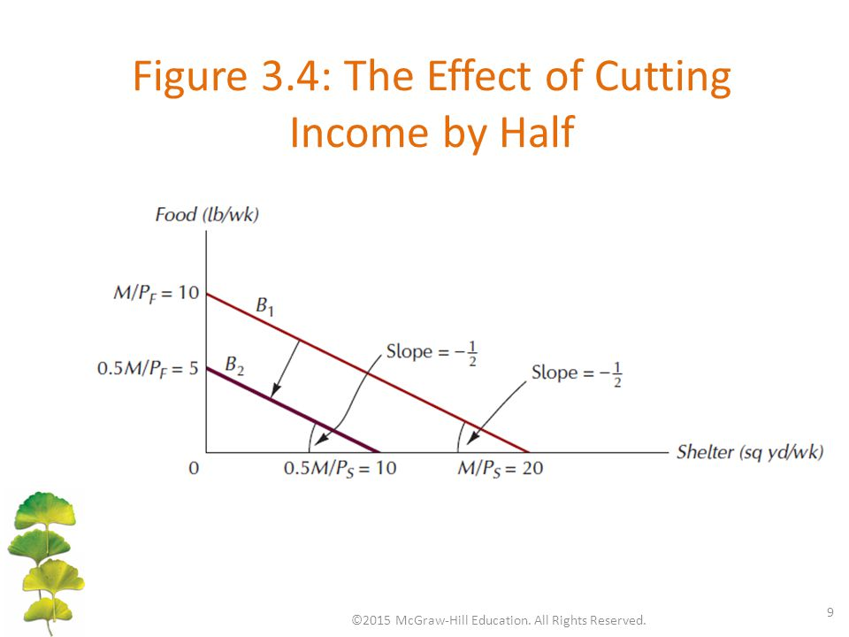 Figure 3.4: The Effect of Cutting Income by Half ©2015 McGraw-Hill Education. All Rights Reserved. 9