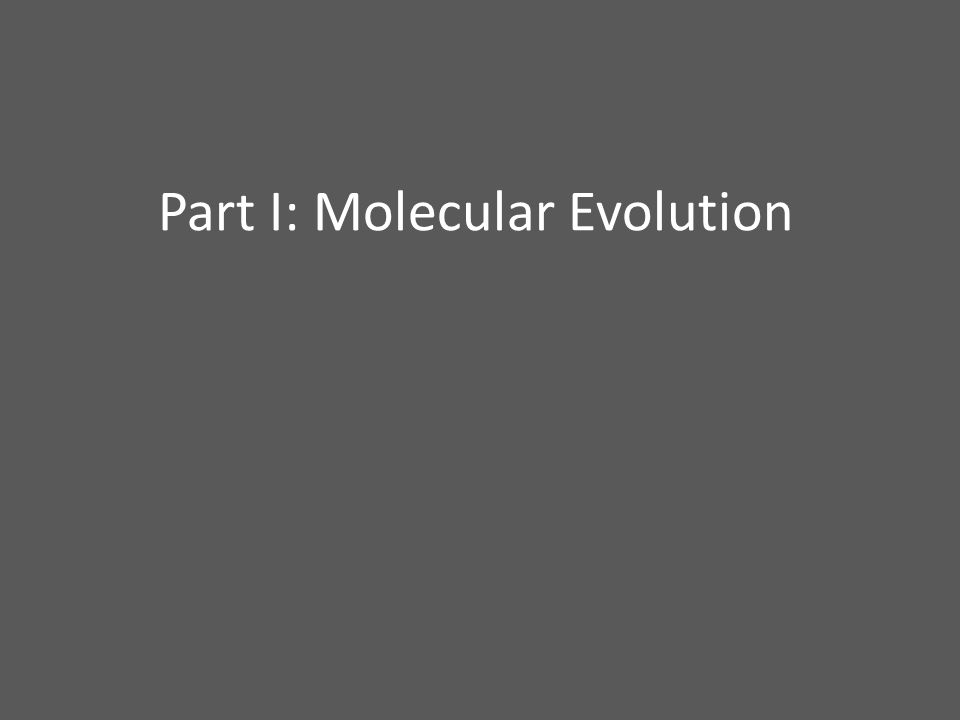 Part I: Molecular Evolution
