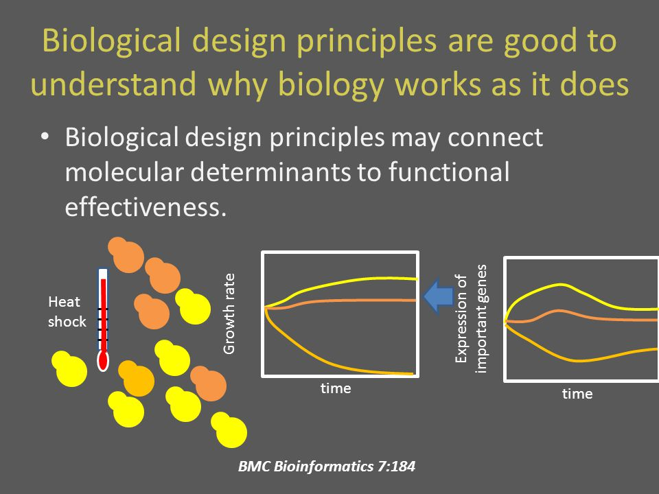 Biological design principles are good to understand why biology works as it does Biological design principles may connect molecular determinants to functional effectiveness.