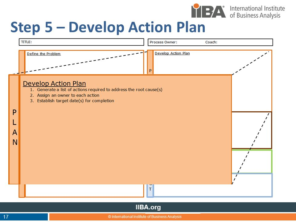 © International Institute of Business Analysis IIBA.org 17 Step 5 – Develop Action Plan