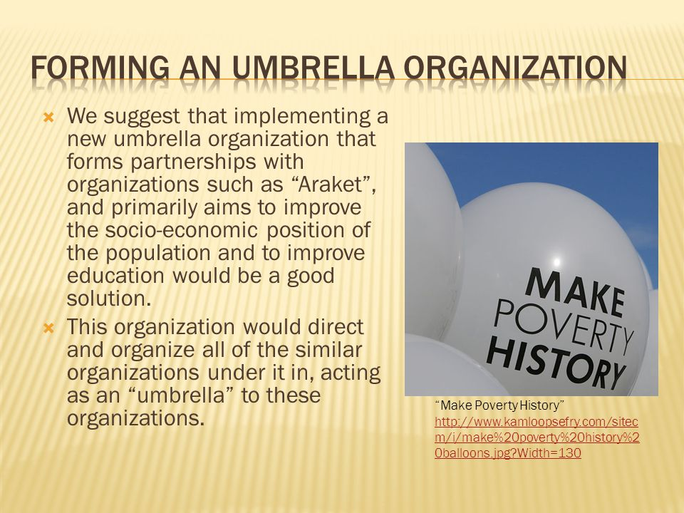  We suggest that implementing a new umbrella organization that forms partnerships with organizations such as Araket , and primarily aims to improve the socio-economic position of the population and to improve education would be a good solution.