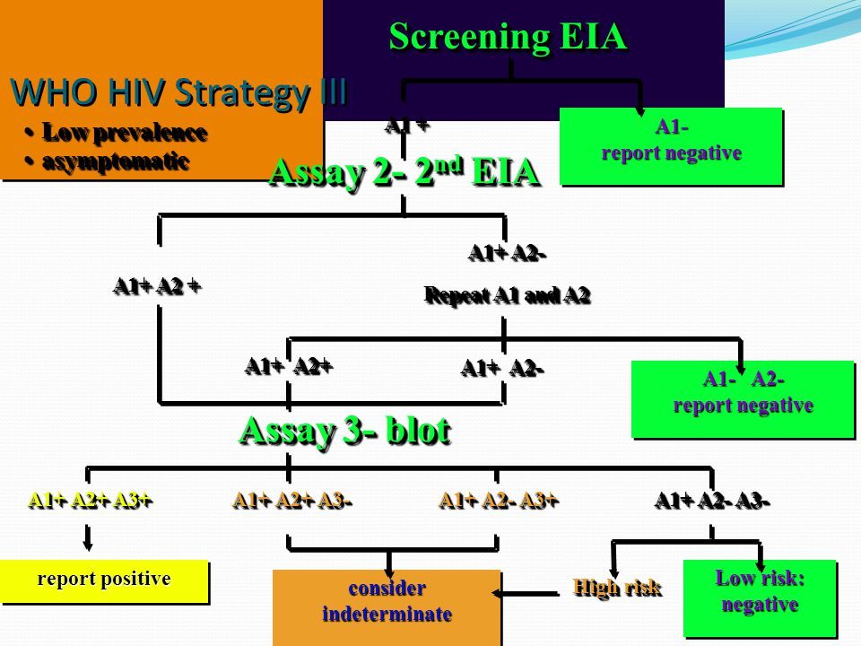 WHO HIV Strategy III Assay 2- 2 nd EIA A1+ A2 + A1+ A2- Repeat A1 and A2 A1+ A2- Repeat A1 and A2 A1+ A2+ A1+ A2- Assay 3- blot A1+ A2+ A3+ report positive consider indeterminate A1+ A2+ A3- A1+ A2- A3+ A1+ A2- A3- High risk Low risk: negative negative Low prevalenceLow prevalence asymptomaticasymptomatic Low prevalenceLow prevalence asymptomaticasymptomatic A1 + Screening EIA A1- report negative A1- A1- A2- report negative A1- A2- report negative