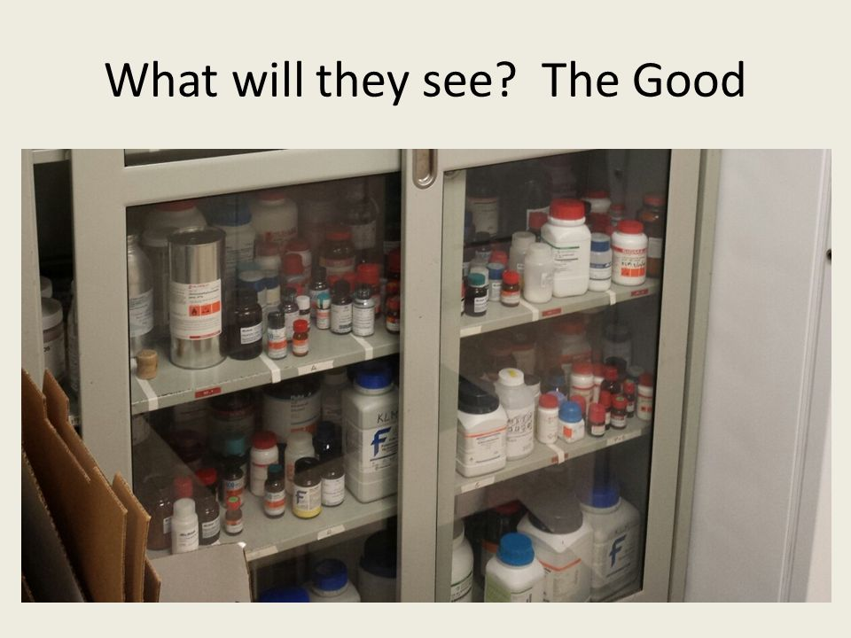 What will they see The Good