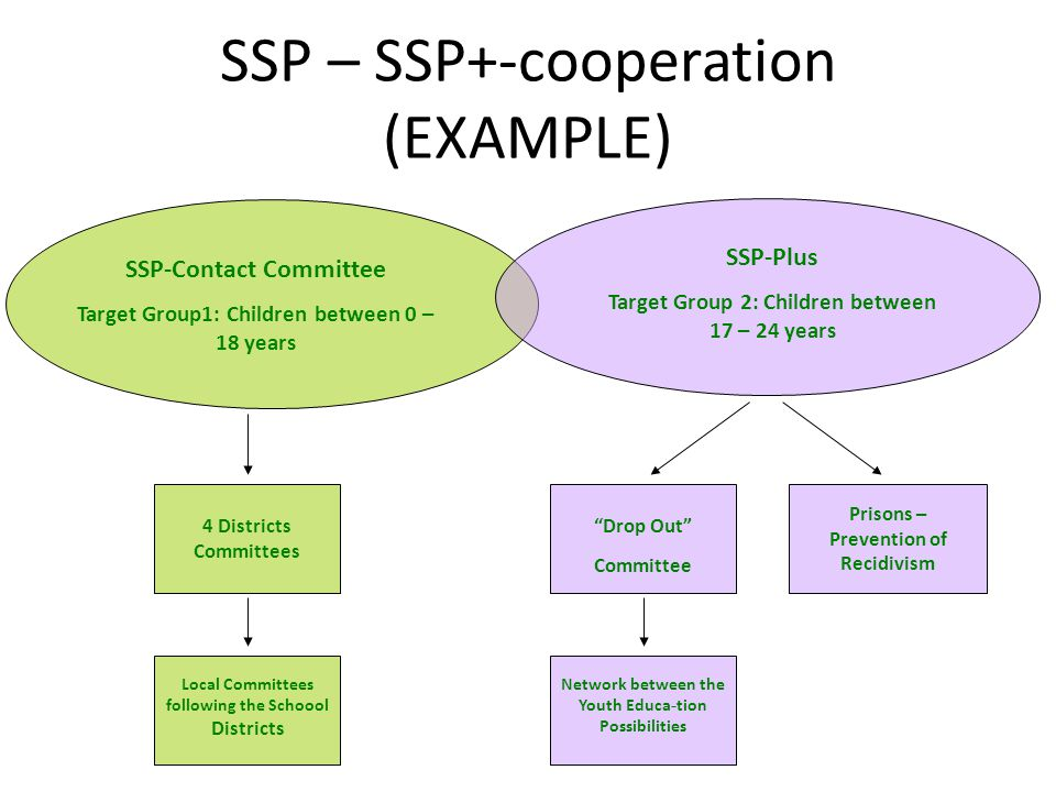 SSP – SSP+-cooperation (EXAMPLE) 4 Districts Committees Local Committees following the Schoool Districts Drop Out Committee Prisons – Prevention of Recidivism Network between the Youth Educa - tion Possibilities SSP-Contact Committee Target Group1: Children between 0 – 18 years SSP-Plus Target Group 2: Children between 17 – 24 years