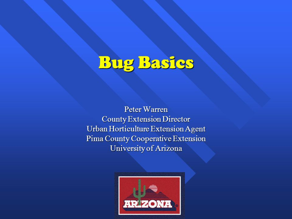 Bug Basics Peter Warren County Extension Director Urban Horticulture Extension Agent Pima County Cooperative Extension University of Arizona