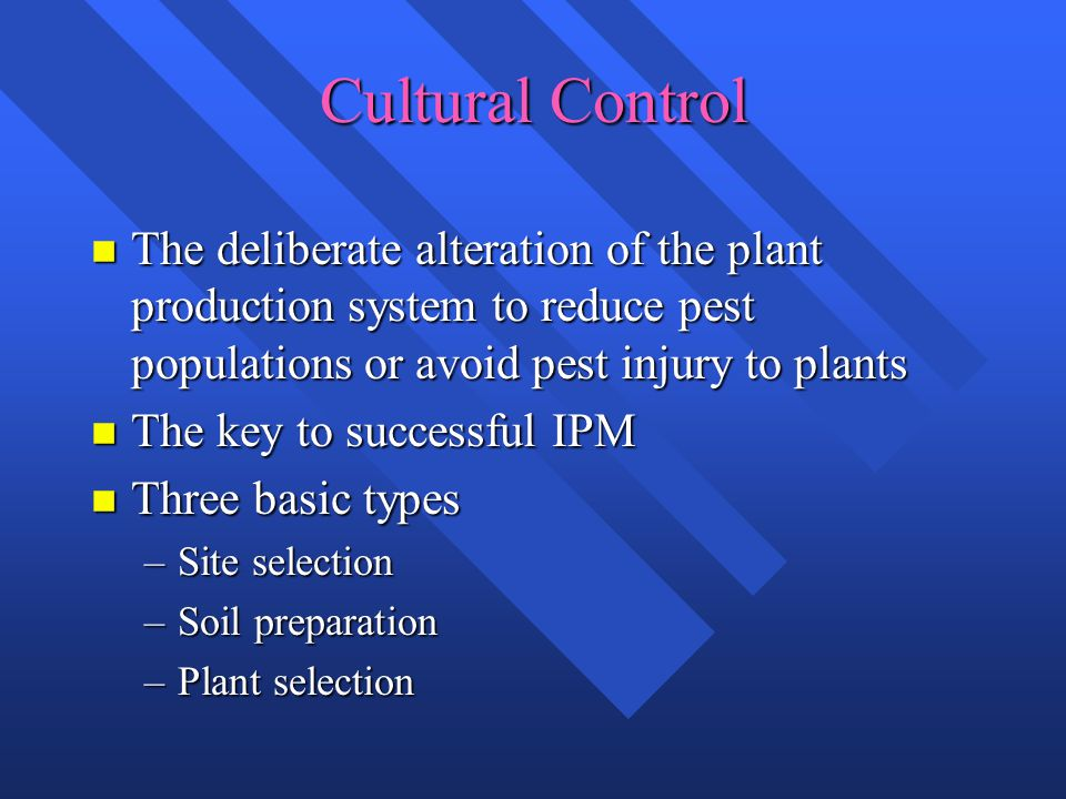 Cultural Control n The deliberate alteration of the plant production system to reduce pest populations or avoid pest injury to plants n The key to successful IPM n Three basic types –Site selection –Soil preparation –Plant selection
