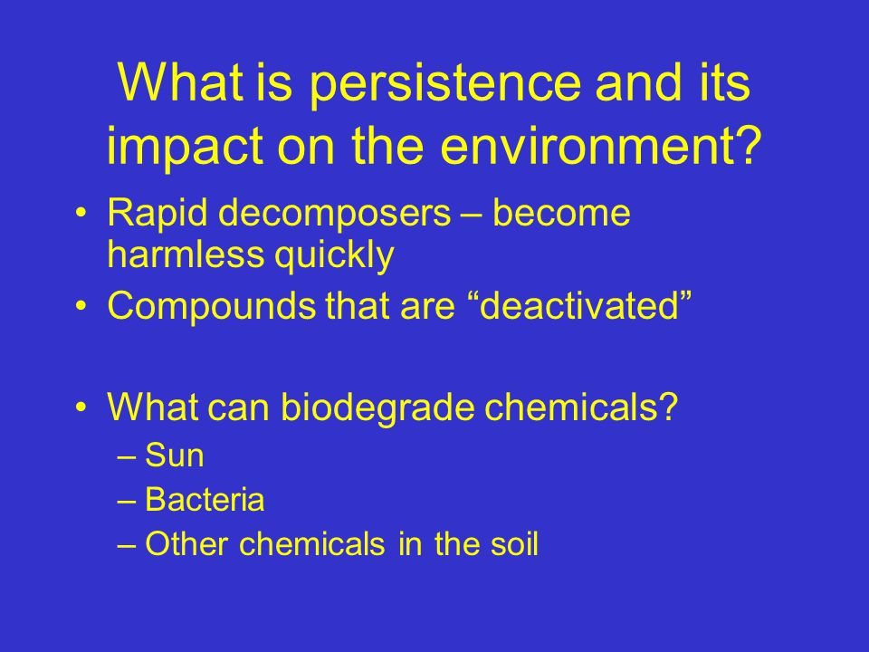 What is persistence and its impact on the environment.
