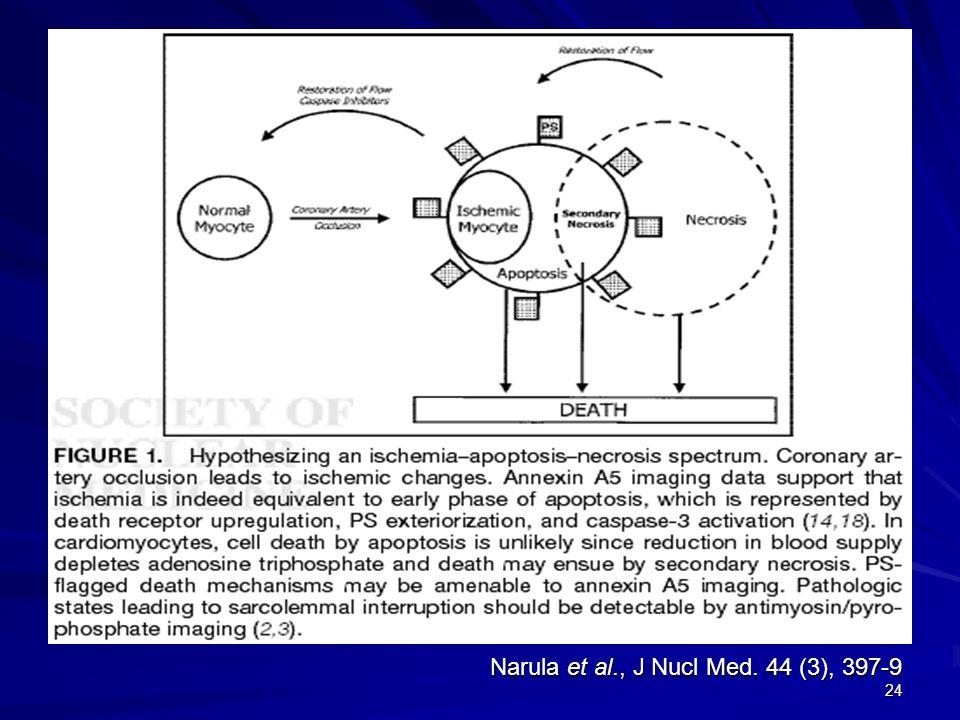 24 Narula et al., J Nucl Med. 44 (3), 397-9
