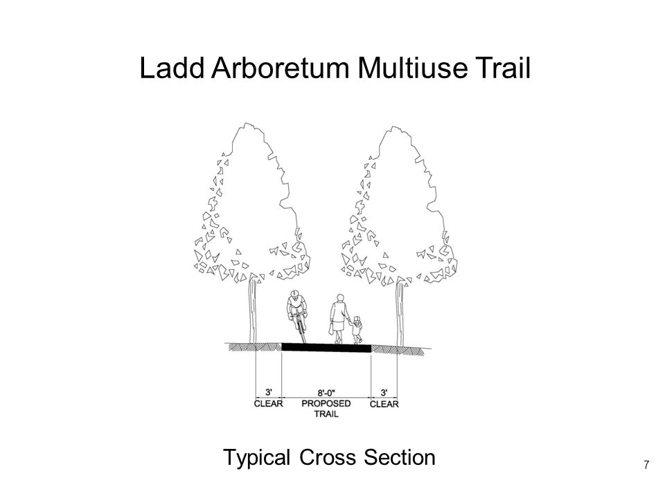 Ladd Arboretum Multiuse Trail Typical Cross Section 7