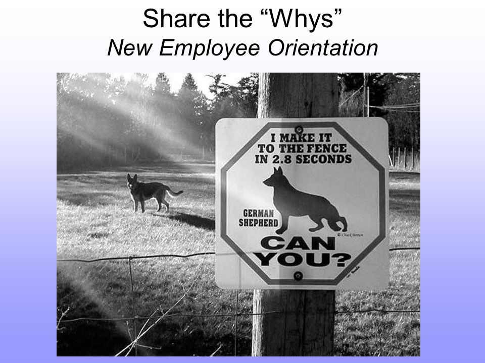 Share the Whys New Employee Orientation