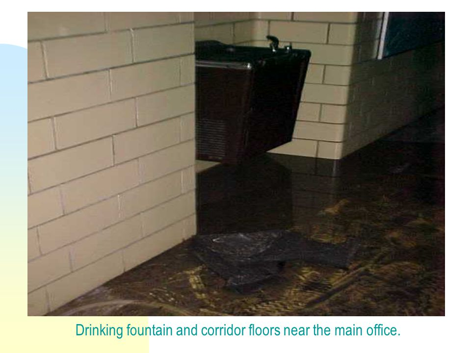Drinking fountain and corridor floors near the main office.
