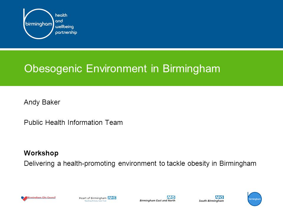 Obesogenic Environment in Birmingham Andy Baker Public Health Information Team Workshop Delivering a health-promoting environment to tackle obesity in
