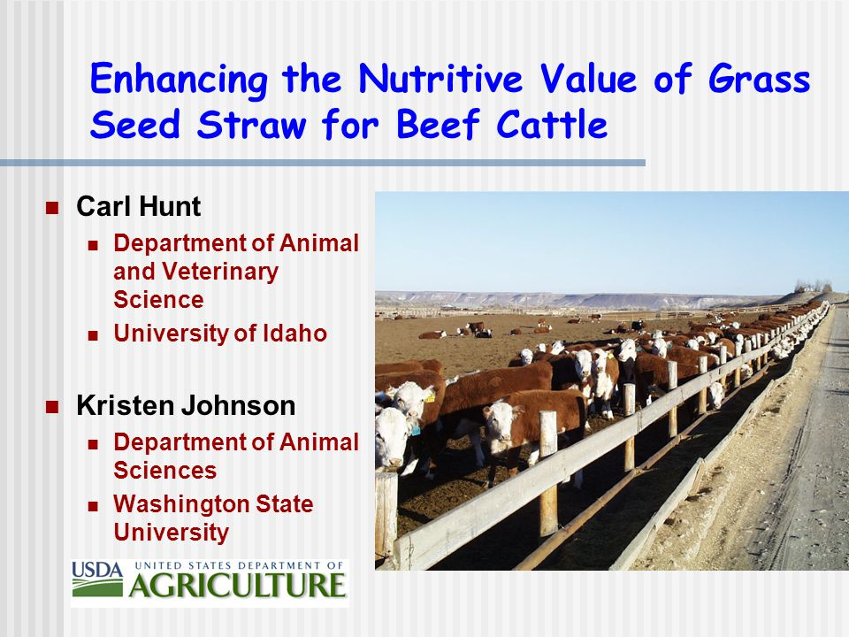 Enhancing the Nutritive Value of Grass Seed Straw for Beef Cattle Carl Hunt Department of Animal and Veterinary Science University of Idaho Kristen Johnson Department of Animal Sciences Washington State University