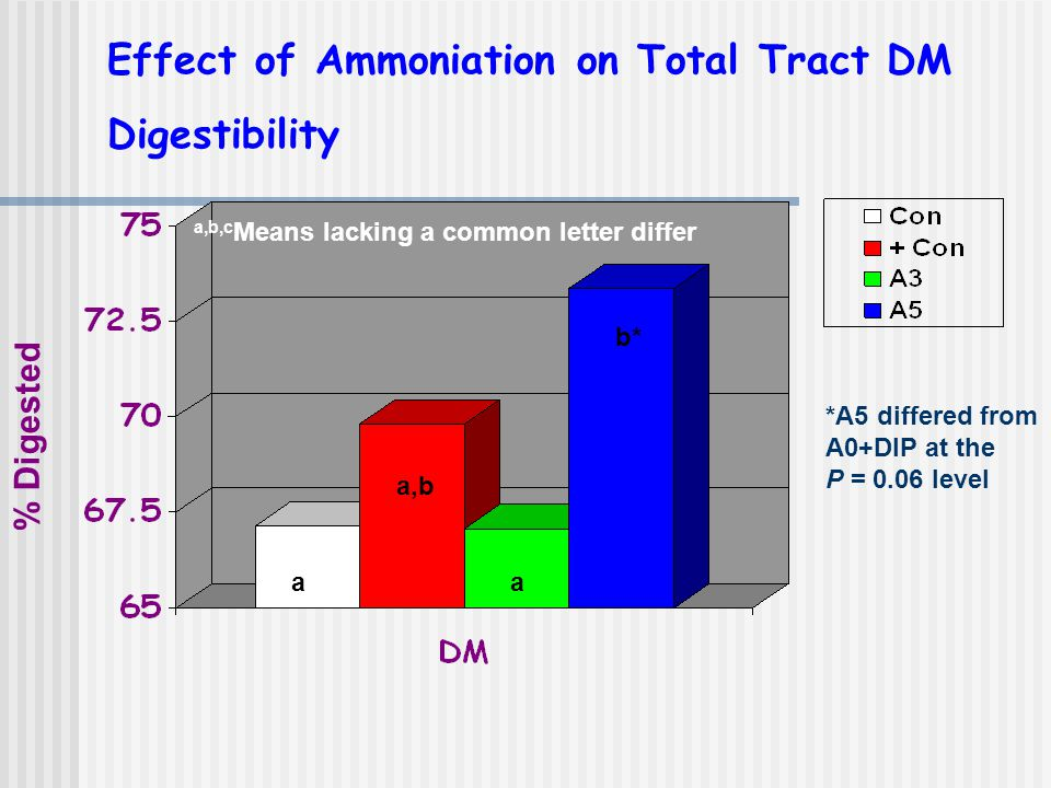 Effect of Ammoniation on Total Tract DM Digestibility % Digested a,b,c Means lacking a common letter differ aa a,b b* *A5 differed from A0+DIP at the P = 0.06 level