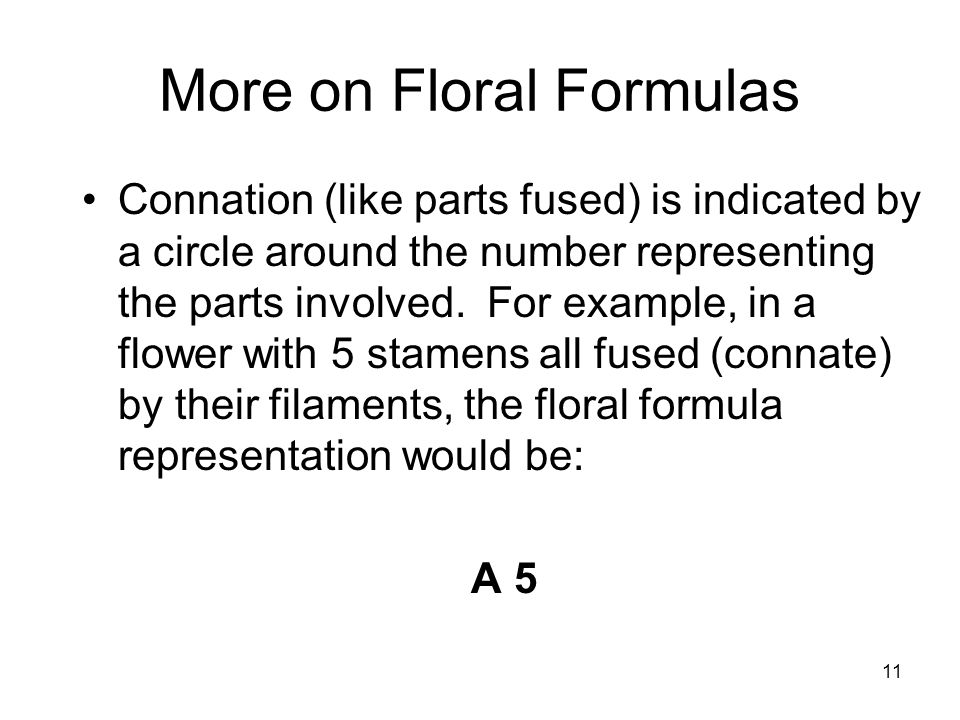 11 More on Floral Formulas Connation (like parts fused) is indicated by a circle around the number representing the parts involved.
