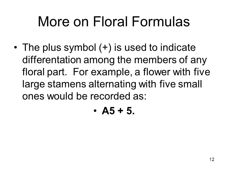 12 More on Floral Formulas The plus symbol (+) is used to indicate differentation among the members of any floral part.