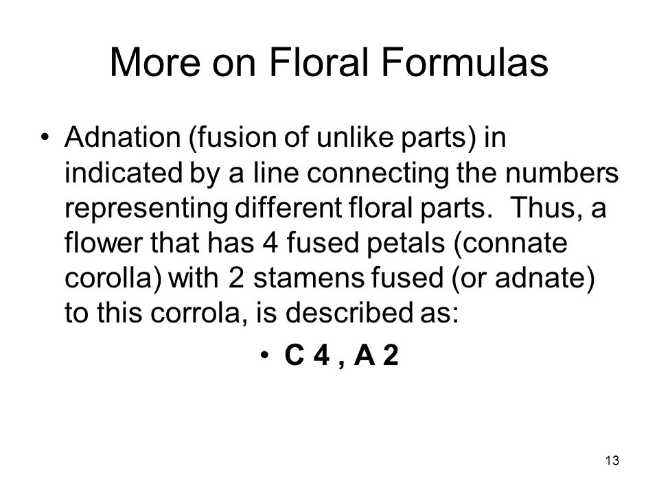 13 More on Floral Formulas Adnation (fusion of unlike parts) in indicated by a line connecting the numbers representing different floral parts.