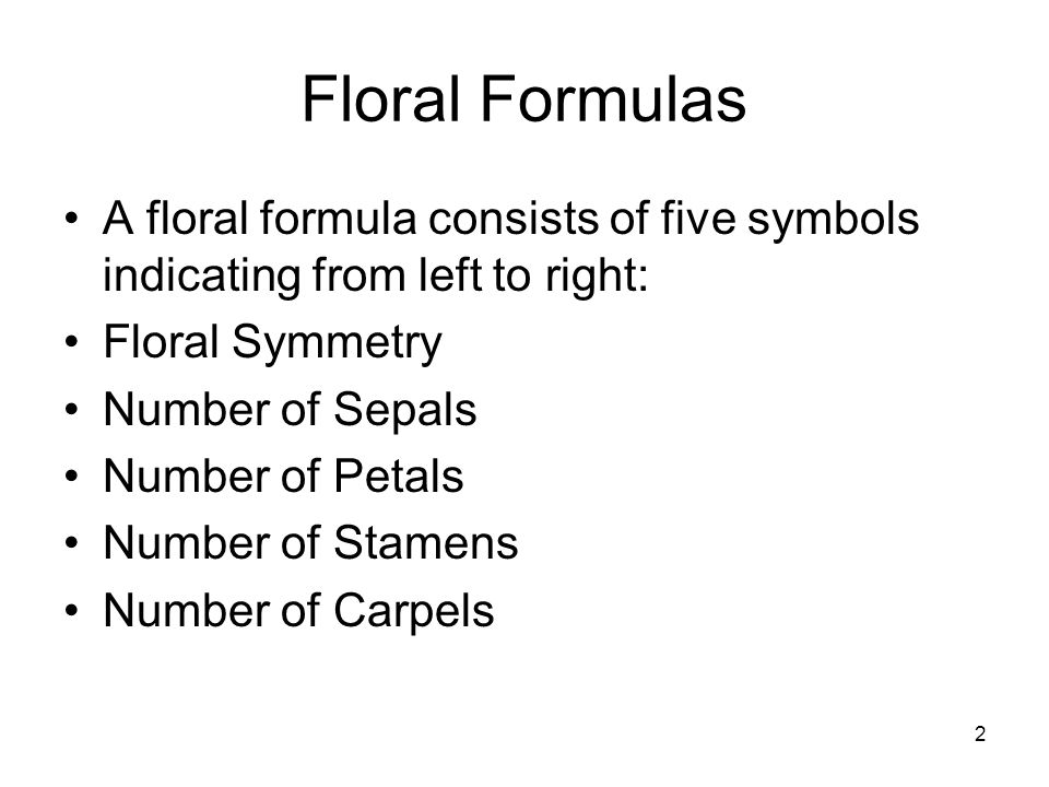 2 Floral Formulas A floral formula consists of five symbols indicating from left to right: Floral Symmetry Number of Sepals Number of Petals Number of Stamens Number of Carpels