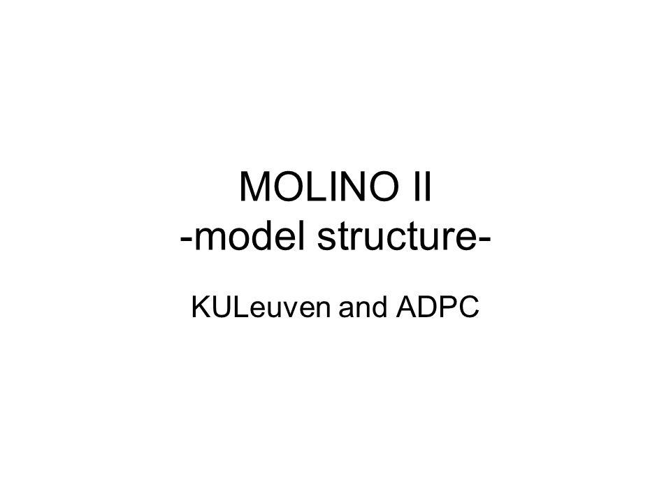 MOLINO II -model structure- KULeuven and ADPC