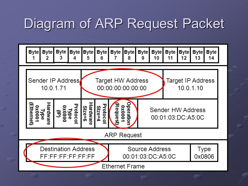 Diagram of ARP Request Packet Ethernet Frame ARP Request Destination Address FF:FF:FF:FF:FF:FF Source Address 00:01:03:DC:A5:0C Type 0x0806 Hardware T
