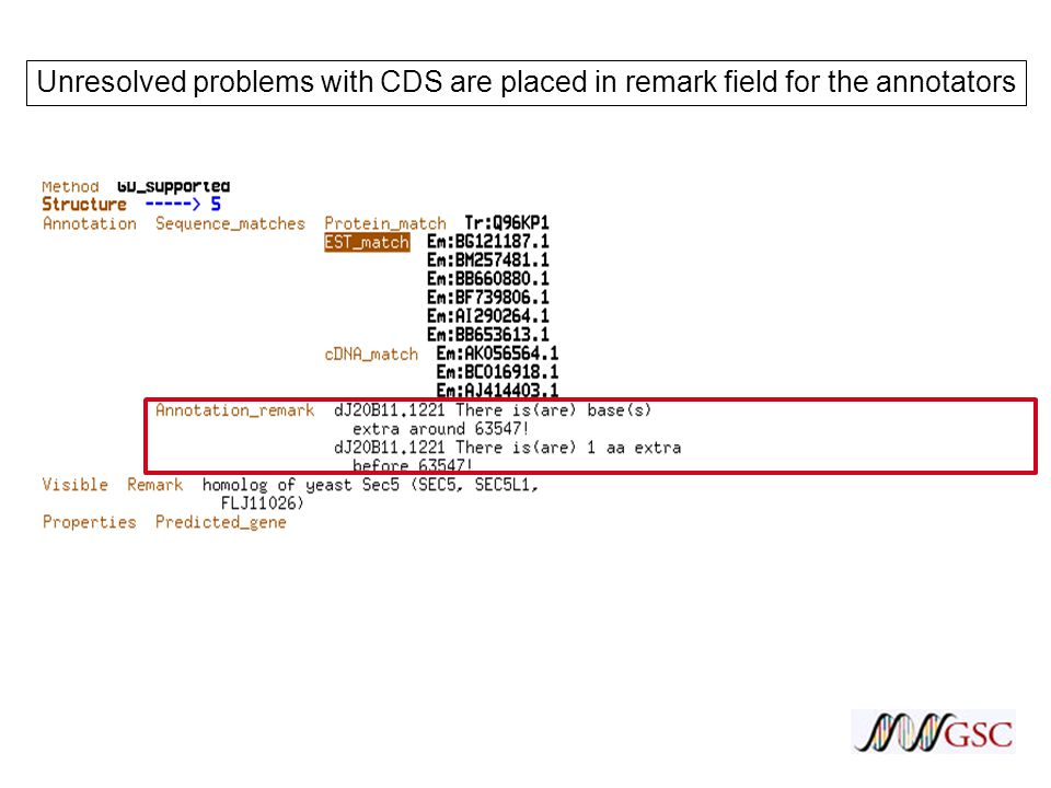 Unresolved problems with CDS are placed in remark field for the annotators