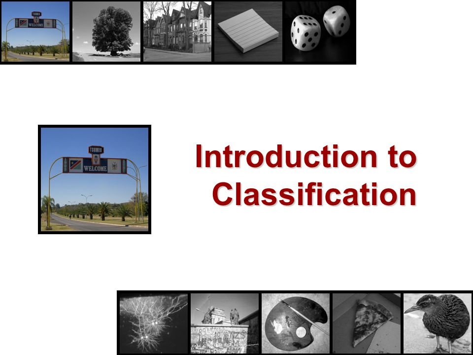 What is classification.