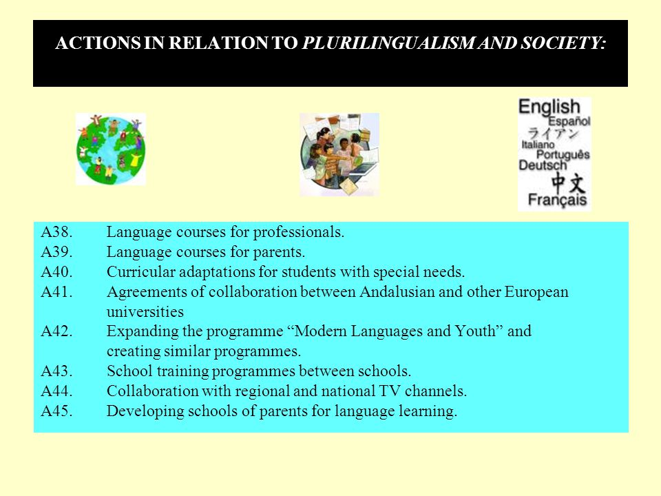 ACTIONS IN RELATION TO PLURILINGUALISM AND SOCIETY: A38.