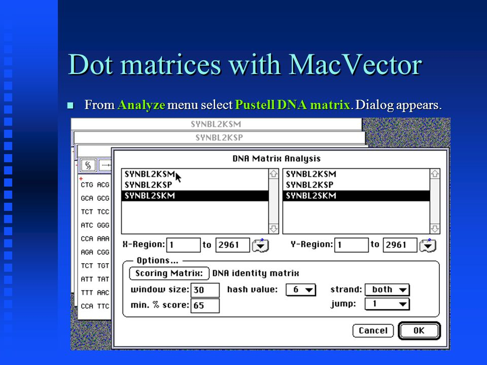 Dot matrices with MacVector From Analyze menu select Pustell DNA matrix.