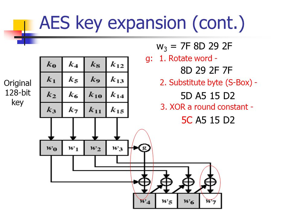 AES key expansion (cont.) Original 128-bit key g: w 3 = 7F 8D 29 2F 1. Rotate word - 8D 29 2F 7F 2. Substitute byte (S-Box) - 5D A5 15 D2 3. XOR a rou