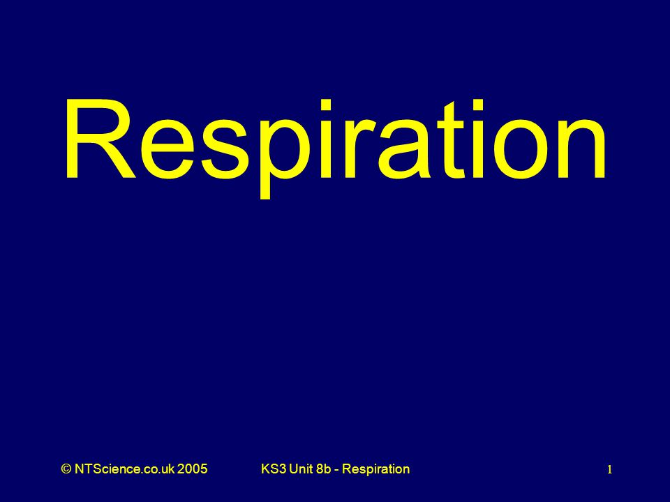 © NTScience.co.uk 2005KS3 Unit 8b - Respiration2 Q1.