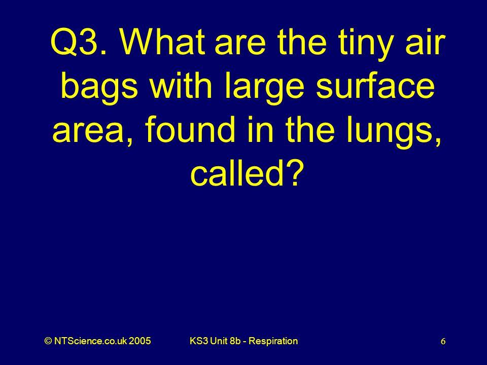 © NTScience.co.uk 2005KS3 Unit 8b - Respiration7 A3. Alveoli