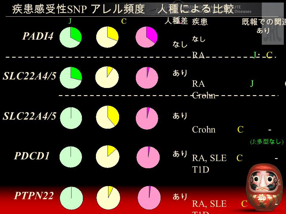 疾患感受性 SNP アレル頻度 人種による比較 J C A PADI4 SLC22A4/5 PDCD1 PTPN22 疾患 既報での関連 あり なし RA J ・ C C RA J C Crohn Crohn C - (J: 多型なし ) RA, SLE C - T1D 人種差 なし あり