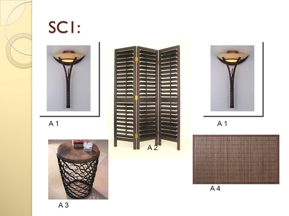 SC1: A 1 A 2 A 1 A 3 A 4
