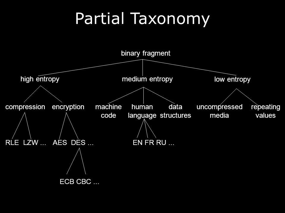 binary fragment high entropymedium entropy low entropy encryptioncompressionrepeating values machine code human language data structures uncompressed media RLE LZW...EN FR RU...AES DES...