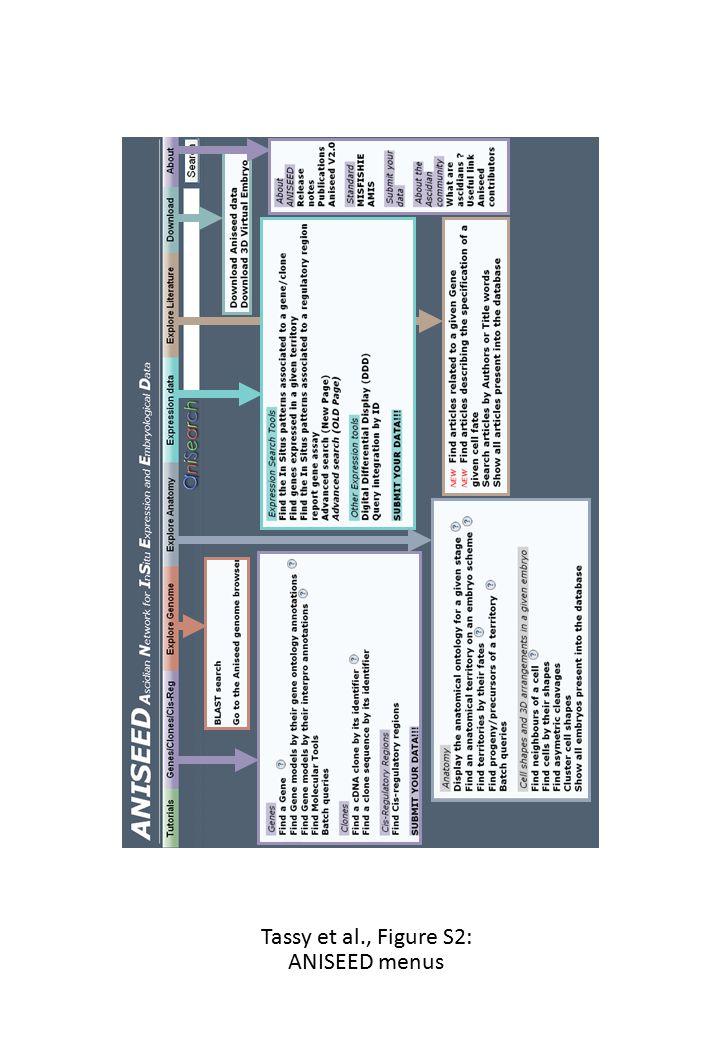 Tassy et al., Figure S2: ANISEED menus