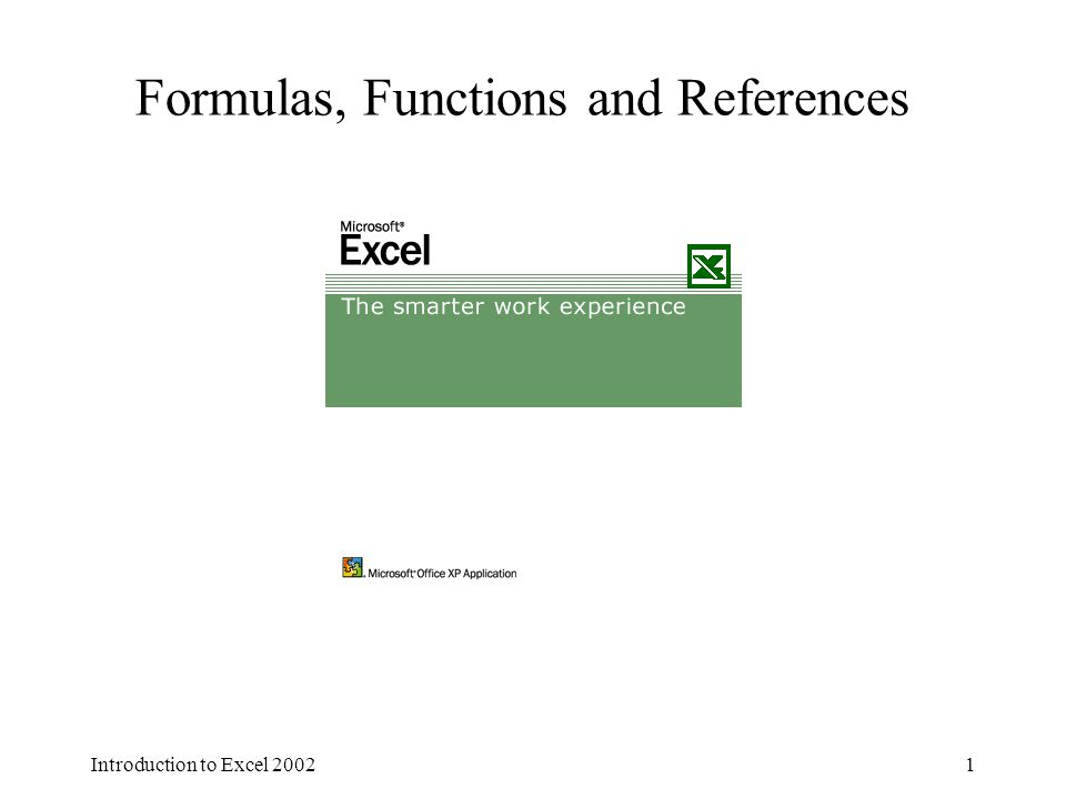 Introduction to Excel 20021 Formulas, Functions and References