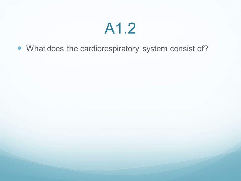 A1.2 What does the cardiorespiratory system consist of?