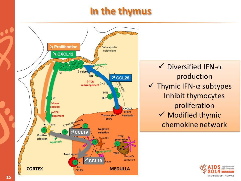 www.aids2014.org Diversified IFN-  production Thymic IFN-  subtypes Inhibit thymocytes proliferation Modified thymic chemokine network Diversified I