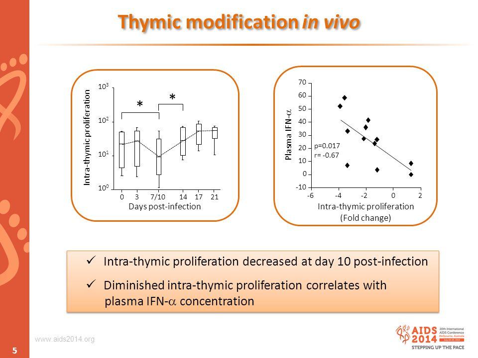 www.aids2014.org Thymic modification in vivo 10 0 10 3 037/1014 Days post-infection 10 2 1721 10 1 * * Intra-thymic proliferation Intra-thymic proliferation decreased at day 10 post-infection Diminished intra-thymic proliferation correlates with plasma IFN-  concentration Intra-thymic proliferation decreased at day 10 post-infection Diminished intra-thymic proliferation correlates with plasma IFN-  concentration 5 -10 0 20 30 40 50 70 Intra-thymic proliferation (Fold change) -602-4 p=0.017 r= -0.67 60 10 -2 Plasma IFN- 