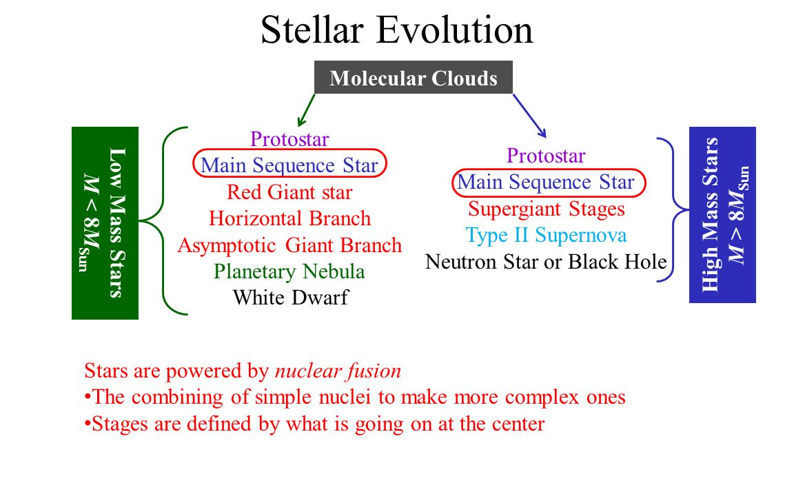 Stellar Evolution Molecular Clouds Protostar Main Sequence Star Red Giant star Horizontal Branch Asymptotic Giant Branch Planetary Nebula White Dwarf Protostar Main Sequence Star Supergiant Stages Type II Supernova Neutron Star or Black Hole Low Mass Stars M < 8 M Sun High Mass Stars M > 8 M Sun Stars are powered by nuclear fusion The combining of simple nuclei to make more complex ones Stages are defined by what is going on at the center