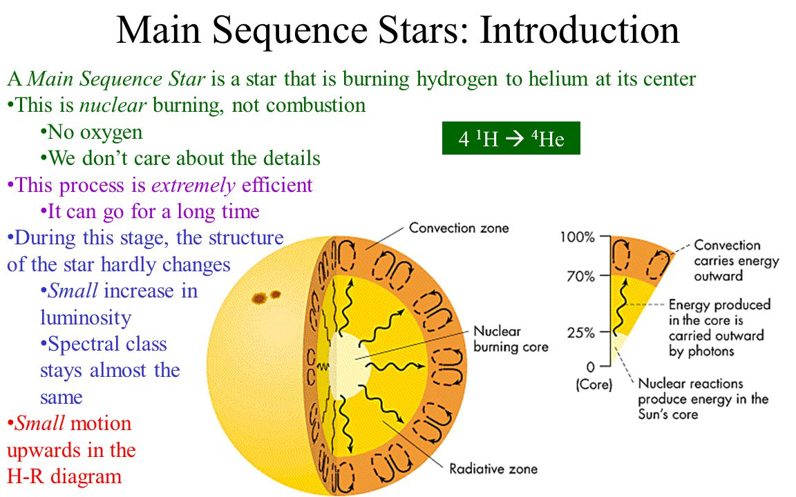 Main Sequence Stars: Introduction A Main Sequence Star is a star that is burning hydrogen to helium at its center This is nuclear burning, not combustion No oxygen We don't care about the details This process is extremely efficient It can go for a long time During this stage, the structure of the star hardly changes Small increase in luminosity Spectral class stays almost the same Small motion upwards in the H-R diagram 4 1 H  4 He