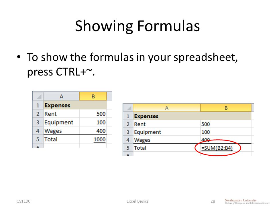 Showing Formulas To show the formulas in your spreadsheet, press CTRL+~. CS1100Excel Basics28