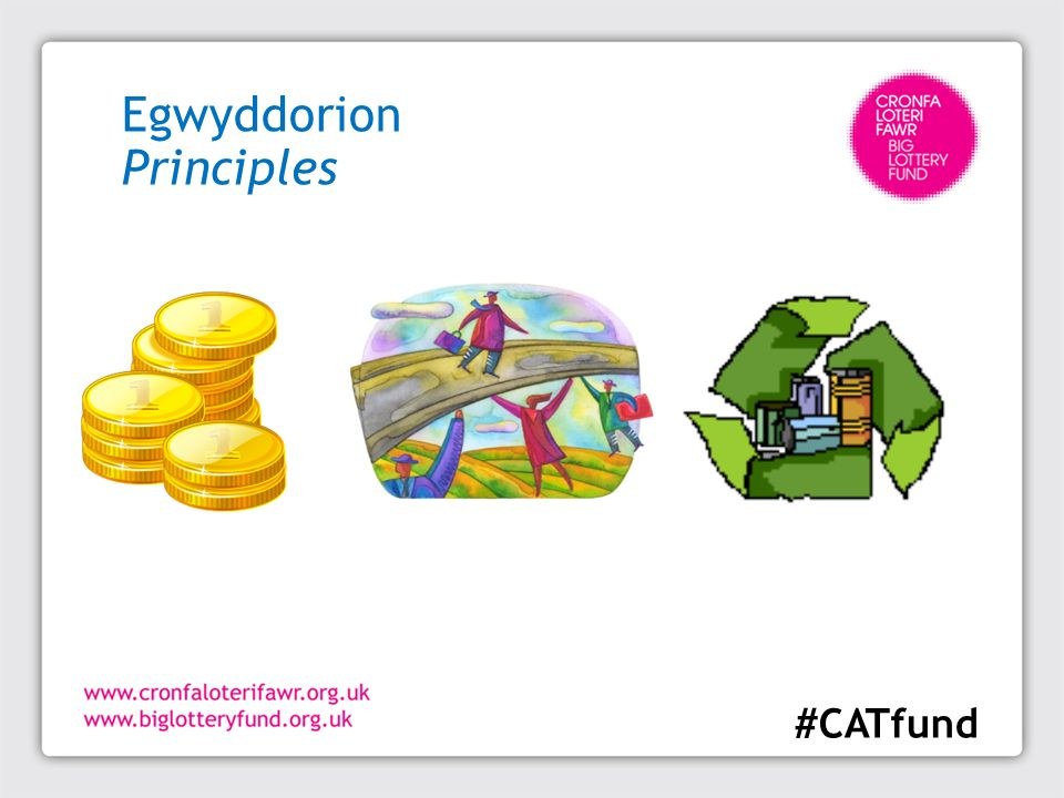 Egwyddorion Principles #CATfund