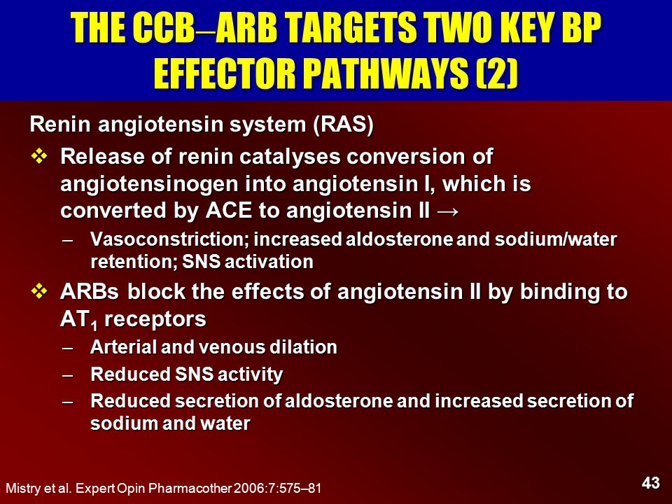 43 THE CCB  ARB TARGETS TWO KEY BP EFFECTOR PATHWAYS (2) Renin angiotensin system (RAS)  Release of renin catalyses conversion of angiotensinogen into angiotensin I, which is converted by ACE to angiotensin II → –Vasoconstriction; increased aldosterone and sodium/water retention; SNS activation  ARBs block the effects of angiotensin II by binding to AT 1 receptors –Arterial and venous dilation –Reduced SNS activity –Reduced secretion of aldosterone and increased secretion of sodium and water Mistry et al.
