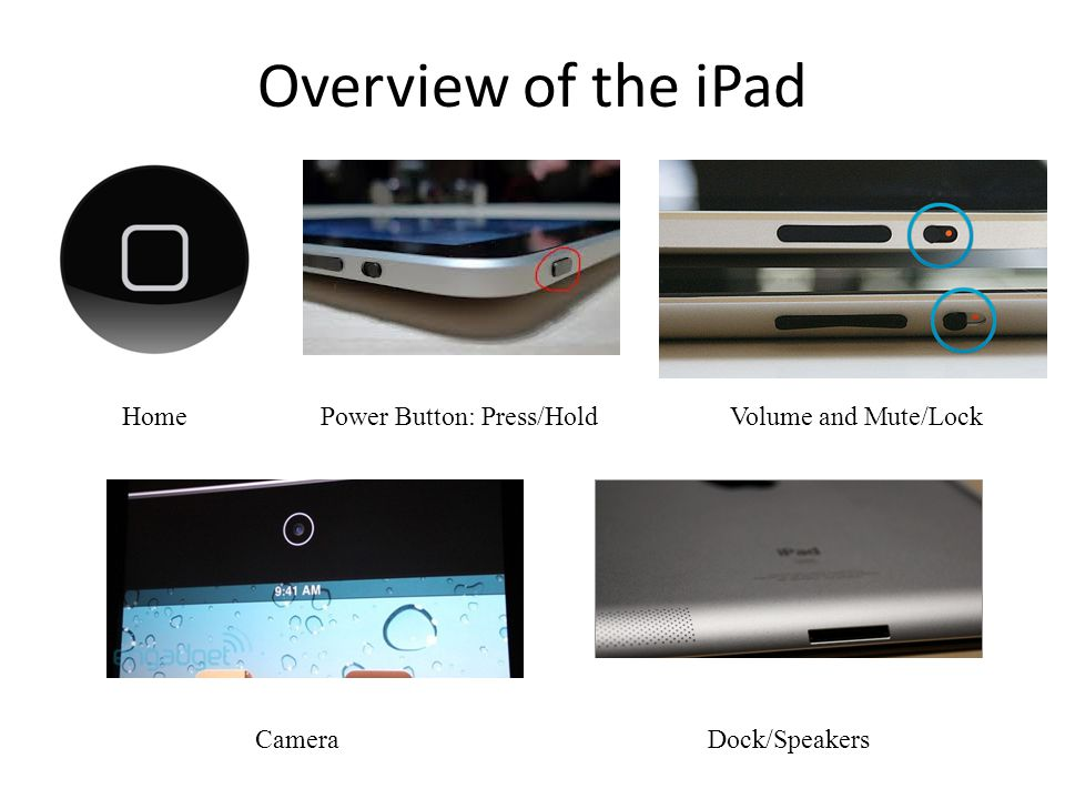 Overview of the iPad HomeVolume and Mute/Lock CameraDock/Speakers Power Button: Press/Hold