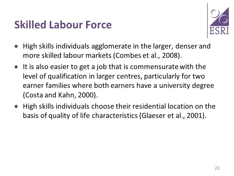 Skilled Labour Force High skills individuals agglomerate in the larger, denser and more skilled labour markets (Combes et al., 2008).