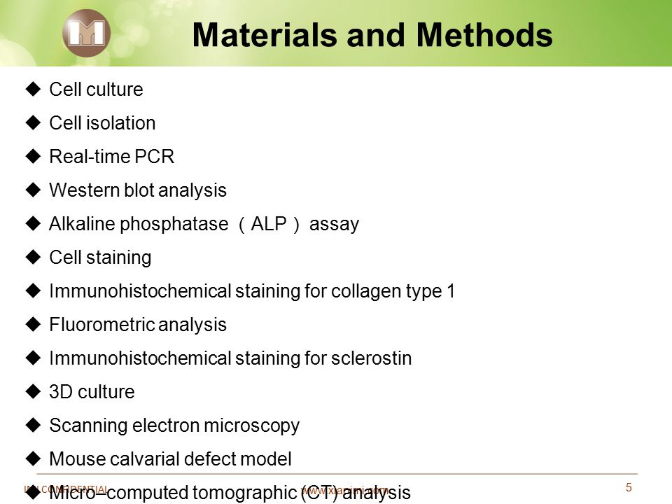 www.xianimi.com 5 IMI CONFIDENTIAL Materials and Methods  Cell culture  Cell isolation  Real-time PCR  Western blot analysis  Alkaline phosphatas