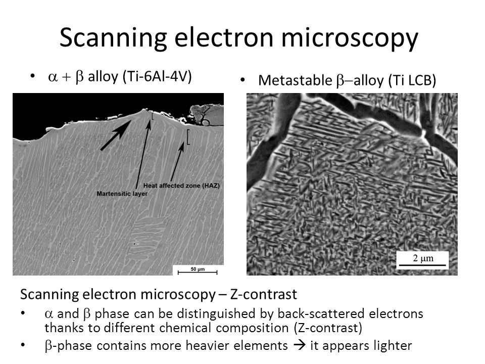 10 SEM observations of Ti-6Al-7Nb alloy -Biomedical alternative to Ti-6Al-4V alloy -SEM image of duplex structure Z contrast dark – alpha interior – Al enriched, Nb depleted edge – equilibrium composition bright – beta -caused by double step annealing (970° + 750°C)