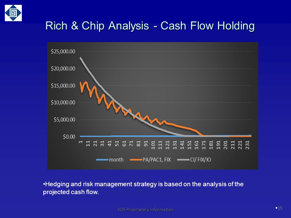 15 Rich & Chip Analysis - Cash Flow Holding Hedging and risk management strategy is based on the analysis of the projected cash flow.